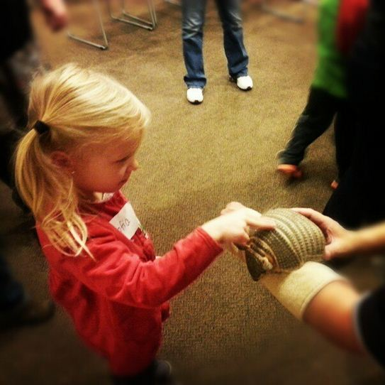 sofia touching armadillo