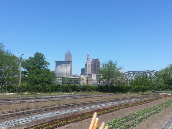 ohio city farm
