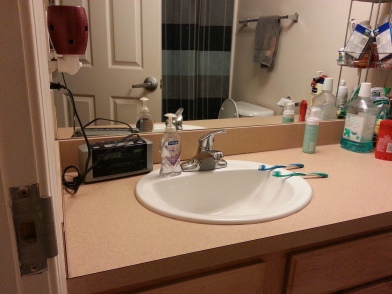See, I cleaned the bathroom!