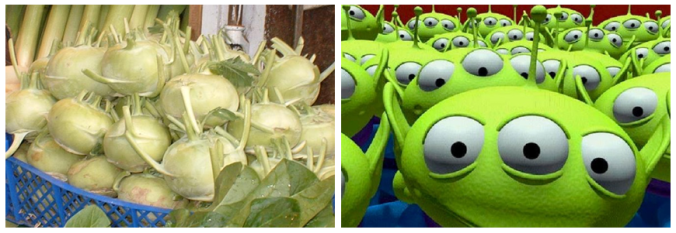 You tell me. Kohlrabi? Or alien?