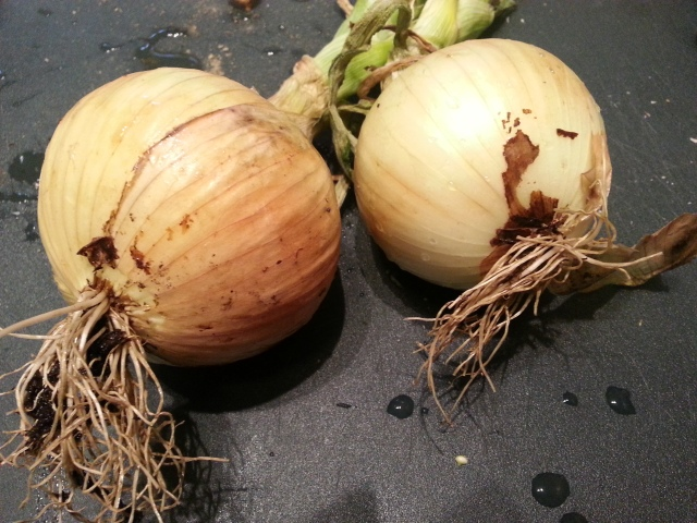 First get some awesome onions from your CSA. You may have to clean them off.