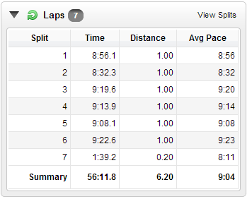 Splits according to Brian's garmin