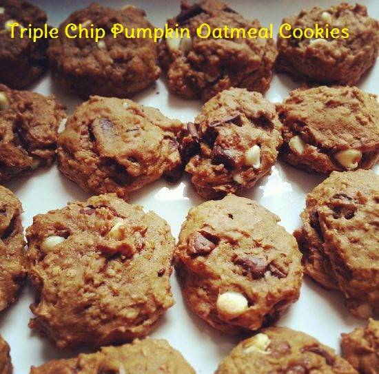 pumpkin triple chip oatmeal cookies - i crashed the web