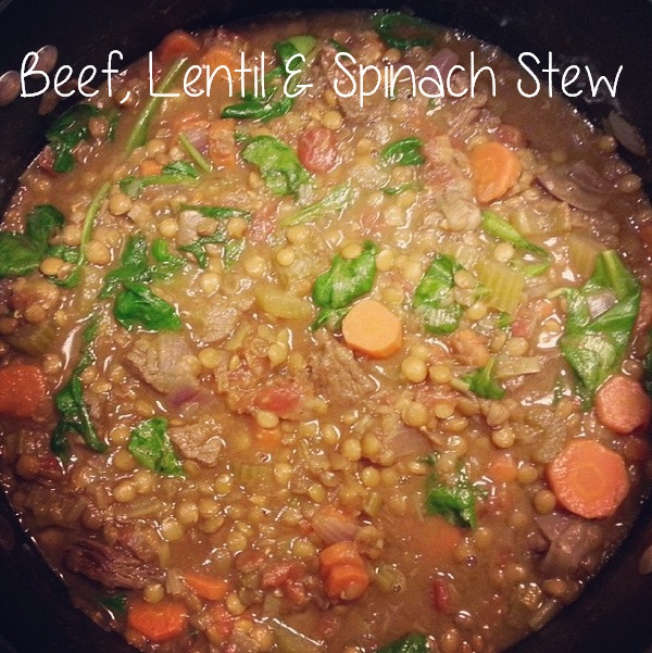 beef, lentil and spinach stew - i crashed the web