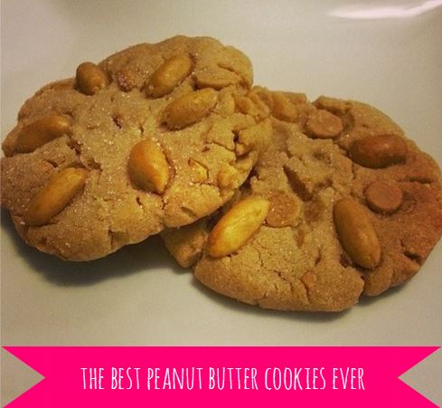peanut butter cookies - i crashed the web