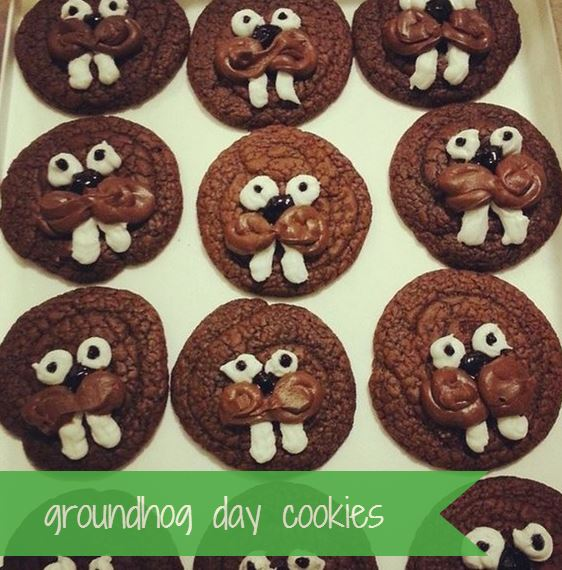 groundhog cookies for groundhog day - i crashed the web