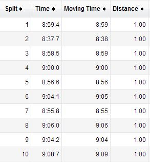 These are times from B's watch - he and I ran together for about 10 miles.