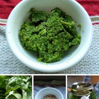 Meatless Monday: Cilantro Garlic Scape Pesto