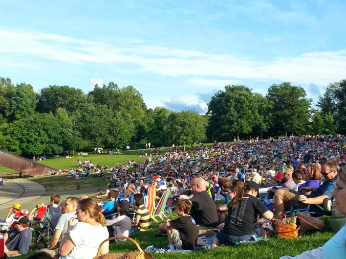 A shot of the lawn - packed with people!