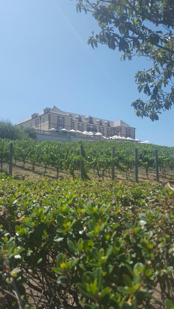winery #1