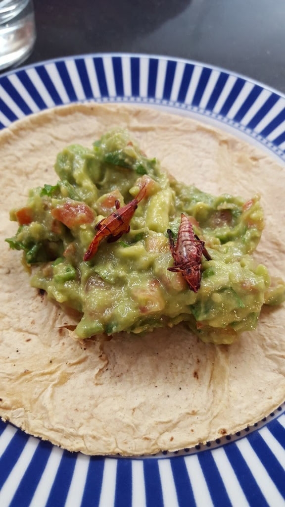 guacamole with grasshoppers.