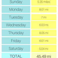 Breaking Mileage Records AND A New Race To Sign Up For